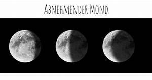 Gärtnern Nach Dem Mond : haareschneiden nach dem mondkalender wie geht das ~ Lizthompson.info Haus und Dekorationen