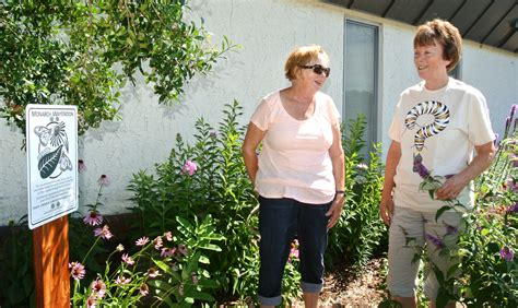 The Flower Garden Cookeville Tn master gardeners pitch in to save the monarch butterfly