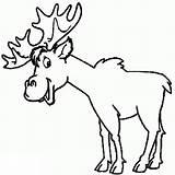 Elk Coloring Pages Worksheets Printable Rocky K5 sketch template