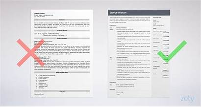 Resume Examples Templates Example Sample Tips Guide