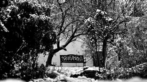 Black White Bench by Black And White Bench In Winter Widescreen Wallpaper