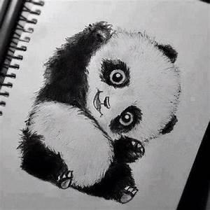 panda drawing Quotes