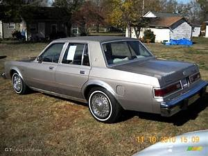 Pewter Metallic 1988 Dodge Diplomat Sedan Exterior Photo  39639735