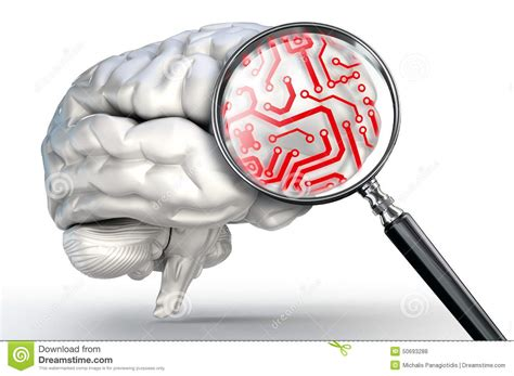 Red Circuit Magnifying Glass Human Brain Stock