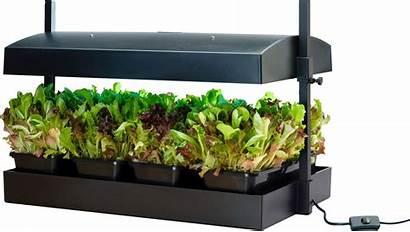 Garden Micro Grow Indoor Bac Croissance Sized