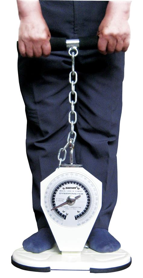 Back, Leg & Chest Dynamometer, 6 Lifting Task