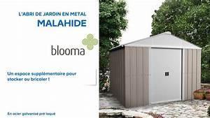 Abri De Jardin Metal Castorama : abri de jardin en m tal malahide blooma 626721 castorama ~ Dailycaller-alerts.com Idées de Décoration