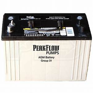 Peakflow Pumps Pfagm31 Peakflow 12v Maintenance Free Deep