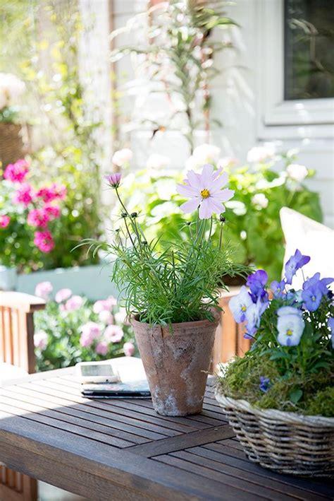 Französischer Garten Pflanzen by Pin Miriam Be Auf Drau 223 En Garten Cottage Garten Und