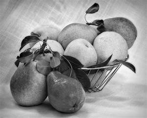 Still Life With Pears In Black And White Photograph by ...