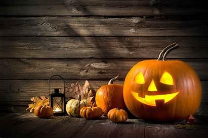 Halloween Studenti