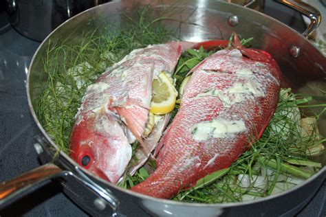 baked snapper red snapper with fresh cut rosemary and lemon verbena