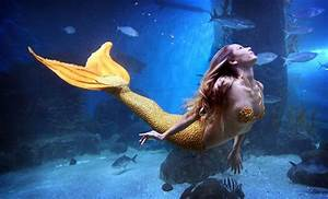 Mahina Mermaid Merfin