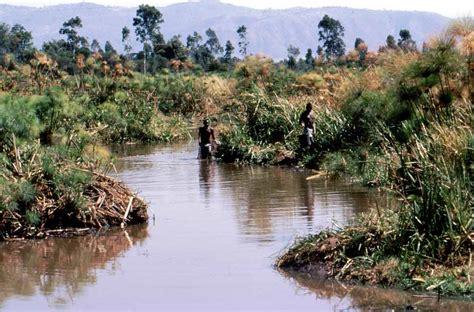 kenya display pond project