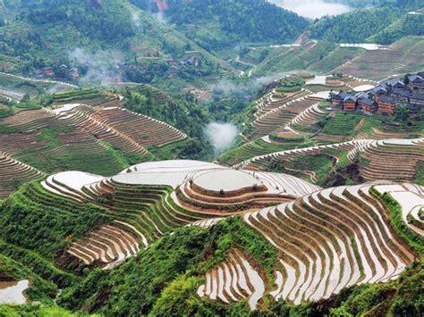 Longji Rice Terraces, Longsheng Rice Terraces, Longji