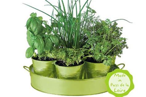 pots d aromates 224 faire pousser persil ciboulette basilic etc
