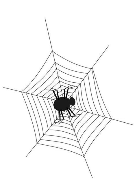 kleurplaat spinnenweb met spin afb