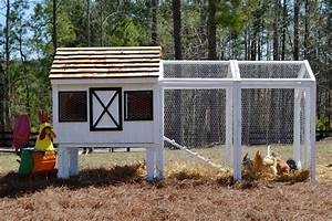 Dominique Chicken Coop  Up To 10 Chickens  From My Pet Chicken