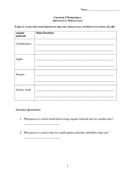 14 Best Images Of Carbohydrates Lipids And Proteins Worksheet  Organic Molecules Worksheet
