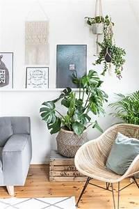 Welche Pflanzen Fürs Schlafzimmer : die besten 25 wohnzimmer pflanzen ideen auf pinterest pflanzen dekor pflanzen f r innen und ~ Frokenaadalensverden.com Haus und Dekorationen