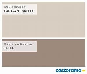 Castorama Nuancier Peinture Mon harmonie Peinture CARAVANE SABLES satin de DULUX VALENTINE