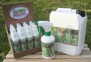 Insecticide Punaise De Lit Pharmacie : pr vention contre les punaises brisons le tabou dogscan ~ Dailycaller-alerts.com Idées de Décoration