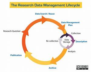 Data Management Basics - Data Management