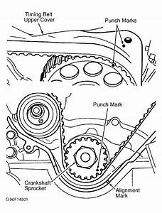 2003 Nissan Frontier Serpentine Belt Routing And Timing Belt Diagrams