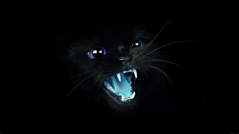 Animal Hd Wallpaper For Android - black panther animal hd wallpaper for android black