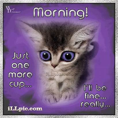 Morning Fine Cup Ll Really Coffee Cat