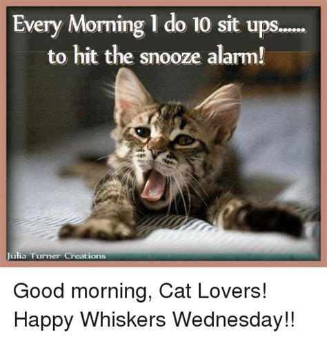 Morning Cat Meme 25 Best Memes About Morning Cat Morning Cat Memes