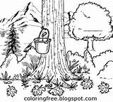 Maple Syrup Printable Coloring Drawing Tree Sugaring Canadian Tap Canada Bucket Colouring Clipart Landscape Drawings Countryside Getdrawings Natural Sheets Worksheet sketch template