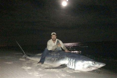 mako shark record polk florida eat catches breaking mirror 11ft then