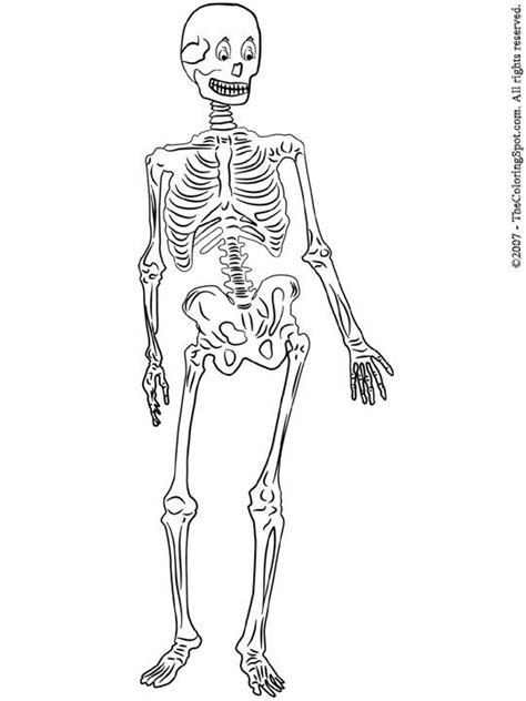 skeleton coloring pages skeleton printable coloring pages