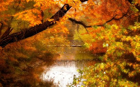 header templates  desktop wallpapers autumn