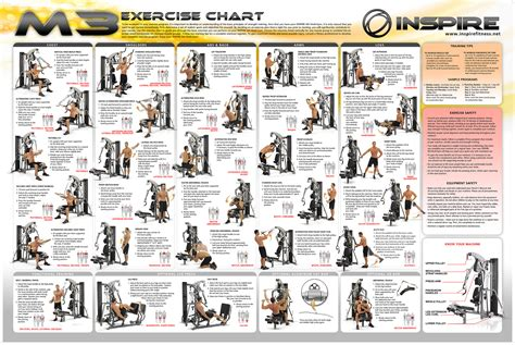 Body Solid Bench Review by Multi Gym Workout Chart Apps Directories