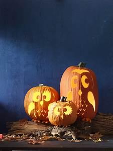 45, Best, Pumpkin, Carving, Ideas, Halloween, 2016