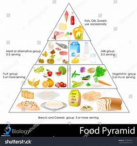 Easy To Edit Vector Illustration Of Food Pyramid Chart