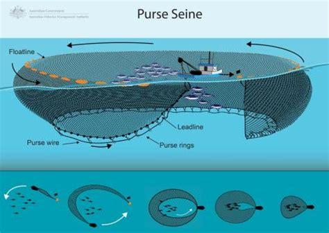 purse seine bycatch management information system bmis