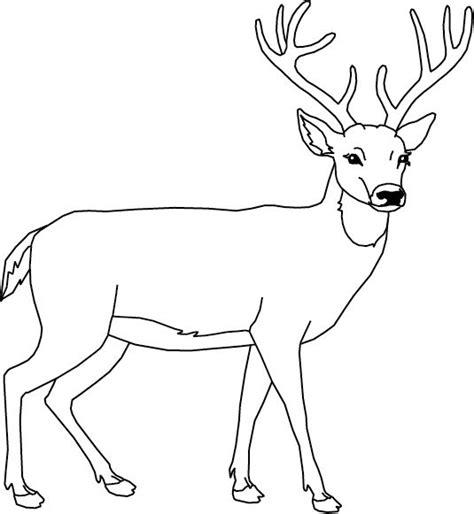 un cerf dessin et peinture animaux et renne