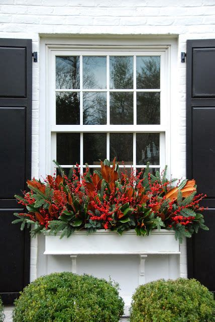 christmas window boxes  magnolia berries  greens