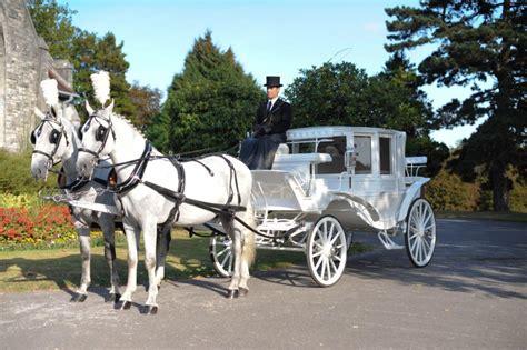 carrozze per cavalli noleggio carrozze il portale della notte