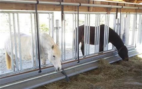 horse panel feeding racks designed  feeding horses