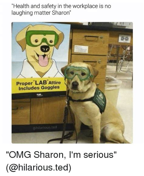 Health And Safety Meme - health and safety in the workplace is no laughing matter sharon proper lab attire includes