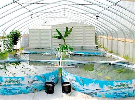 Backyard Fish Farming Supplies