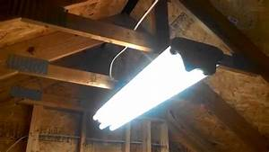 Hanging vintage antique fluorescent lights upstairs at my