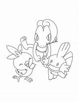 Coloring Pokemon Pages Mudkip Advanced Torchic Mud Torch Colouring Printable Drawing Truck Step Sheets Naruto Olympic Silhouette Getcolorings Getdrawings Groups sketch template