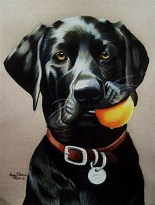 Black Lab with Ball by anniecanjump on DeviantArt