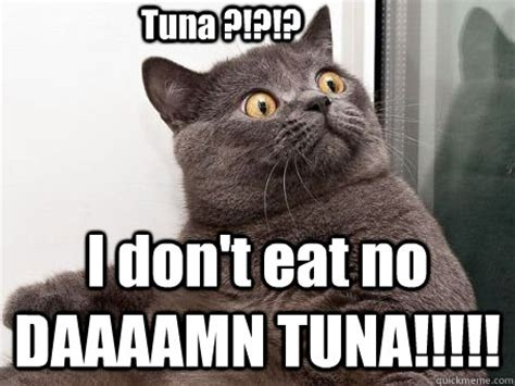 Tuna Meme - tuna i don t eat no daaaamn tuna conspiracy