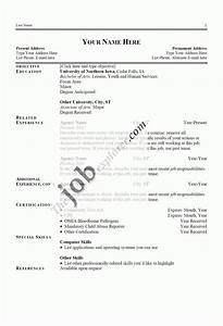 Examples A Good Resume Template